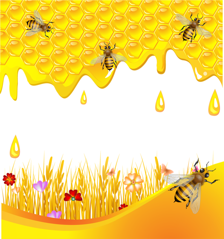 0 785f6 bc599395 XL 1 Beekeeping company Tentorium: welcome to join!